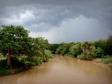 The Awash River